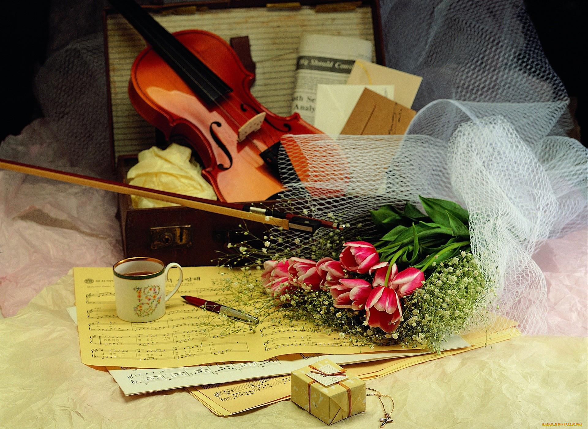 Фото ноты цветы скрипка 4